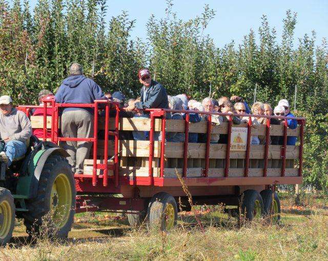 wagon ride tour