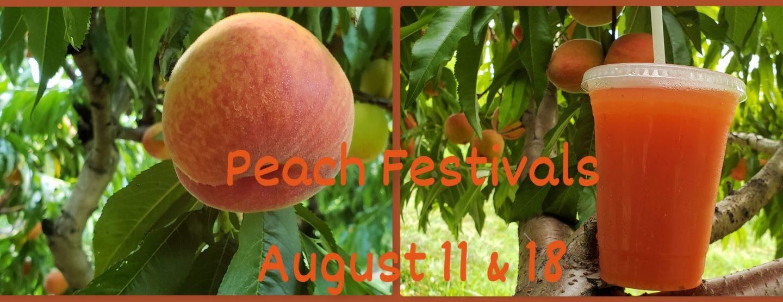 Peach Festiva