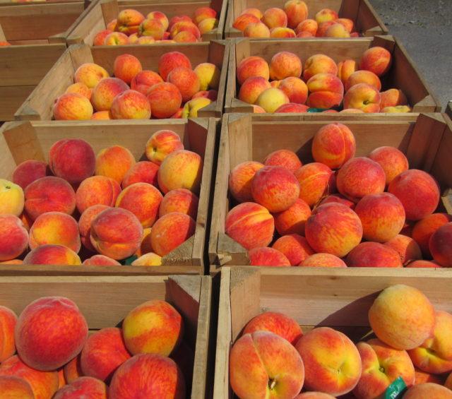 Three Ways to Freeze Peaches